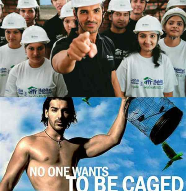 John Abraham Association With Animal Related NGO's