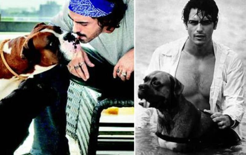 Arjun Rampal, A Dog Lover