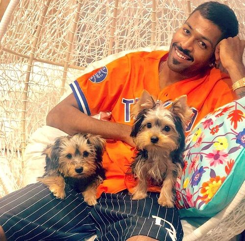 Hardik Pandya loves dogs