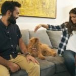 Dinesh Karthik, a dog lover