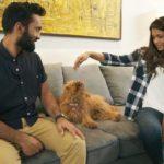 Dinesh Karthik, a dog lover