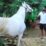 Suryakumar Yadav, an avid animal and bird lover