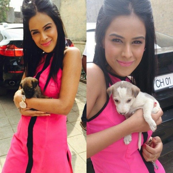 Nia Sharma Playing With Her Puppies