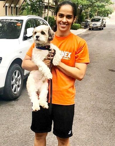 Saina Nehwal loves dogs