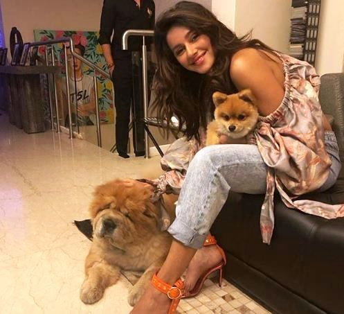 Shibani Dandekar Playing With Her Pets