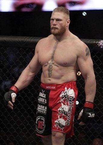 Brocklesnar MMA UFC