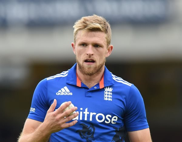 David Willey Profile