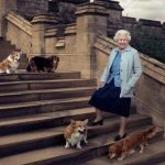 Elizabeth with Corgis and Dorgis