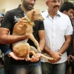 Sathyaraj adopted a stray dog