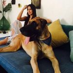 Kim Sharma pet lover