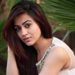 Aksha Pardasany (Actress) Height, Weight, Age, Boyfriend, Biography & More