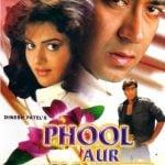 Phool Aur Kaante movie poster