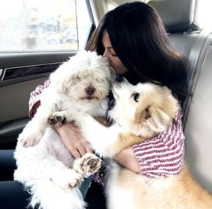 Riya Sen loves dogs
