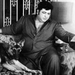 Amjad Khan and His Dogs