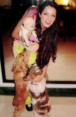 Celina Jaitly playing with dogs