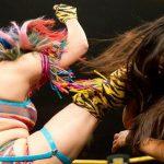 Asuka Spin Kick finisher