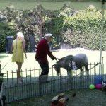 Hugh Hefner - Playboy mansion Zoo