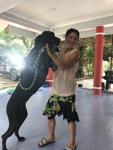 Mary Kom a pet lover