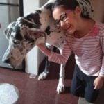 Aakriti Sharma Animal Lover