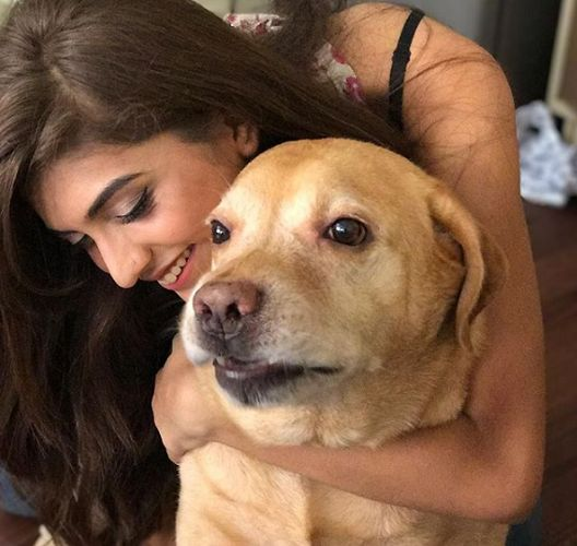 Shruti Sinha, A Dog Lover