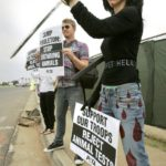 Nasim Aghdam Animal Rights Activist