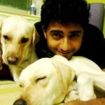Rehaan Roy loves dogs