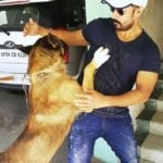 Amit Tiwari, a dog lover