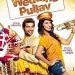 Anushka Ranjan- Wedding Pullav