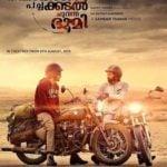 Pearle Maaney Malayalam film debut - Neelakasham Pachakadal Chuvanna Bhoomi (2013)