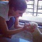 Yashu Dhiman Dog Lover