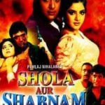 Govind Namdev's Debut Movie Shola Aur Shabnam (1992)