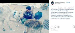 Manveer Choudhary- Animal Lover