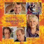 Tina Desai- The Best Exotic Marigold Hotel