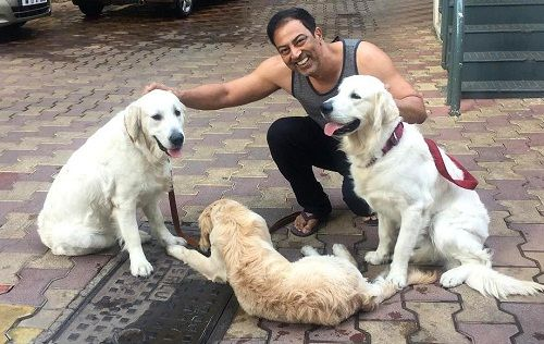 Vindu Dara Singh loves dogs
