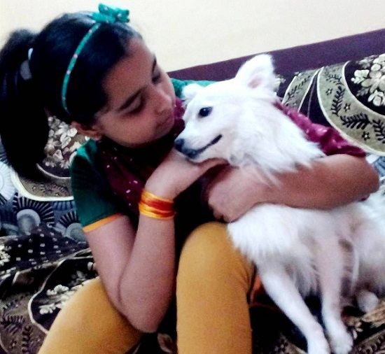 Sparsh Khanchandani loves dogs