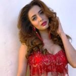Heena Panchal Age, Boyfriend, Family, Biography & More