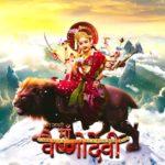 """Jag Janani Maa Vaishno Devi"" Actors, Cast & Crew: Roles, Salary"