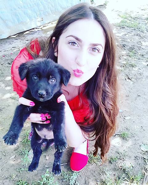 Elif Khan with Dogs