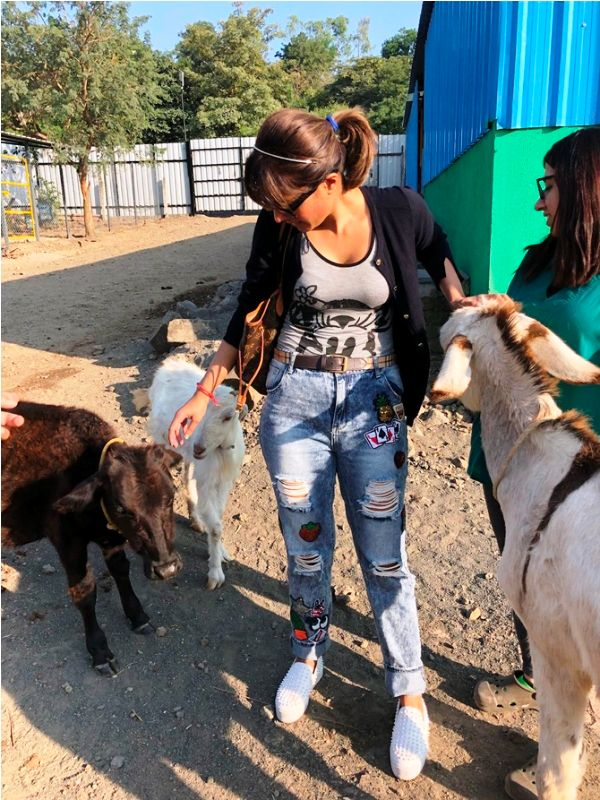 Monicka Vadera Poonawalla Working for the Animal Rights