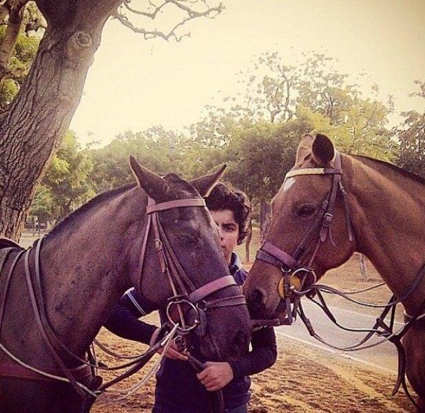 Shikhar Pahariya with horses