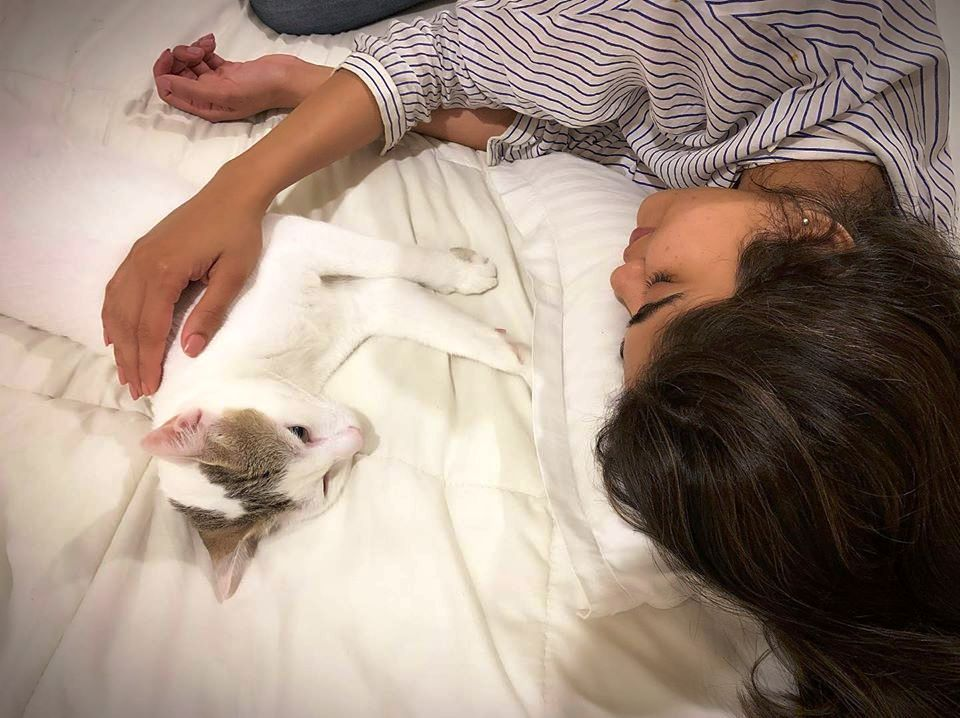 Aaditi Pohankar With Her Pet Cat