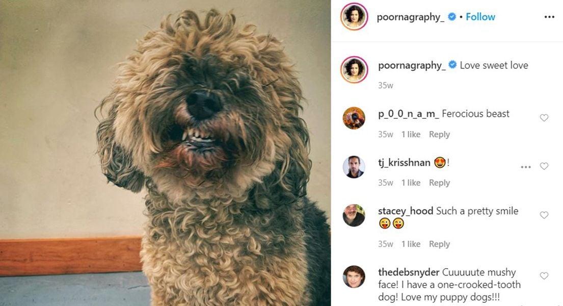 Poorna Jagannathan's Instagram Post About her Pet