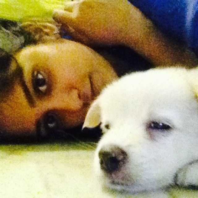 Chandini Chowdary with her pet dog