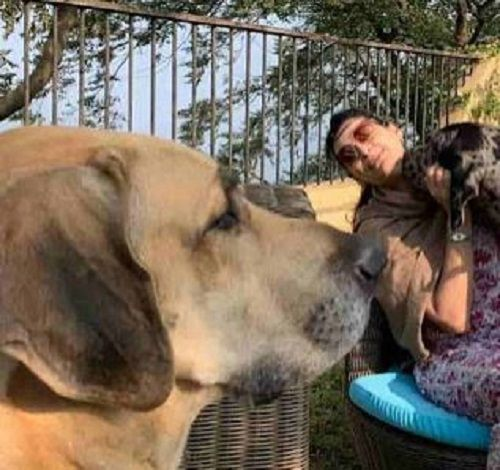 Mana Shetty with her Pet Dogs